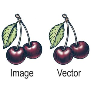 vector artwork 2
