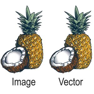 vector artwork 6